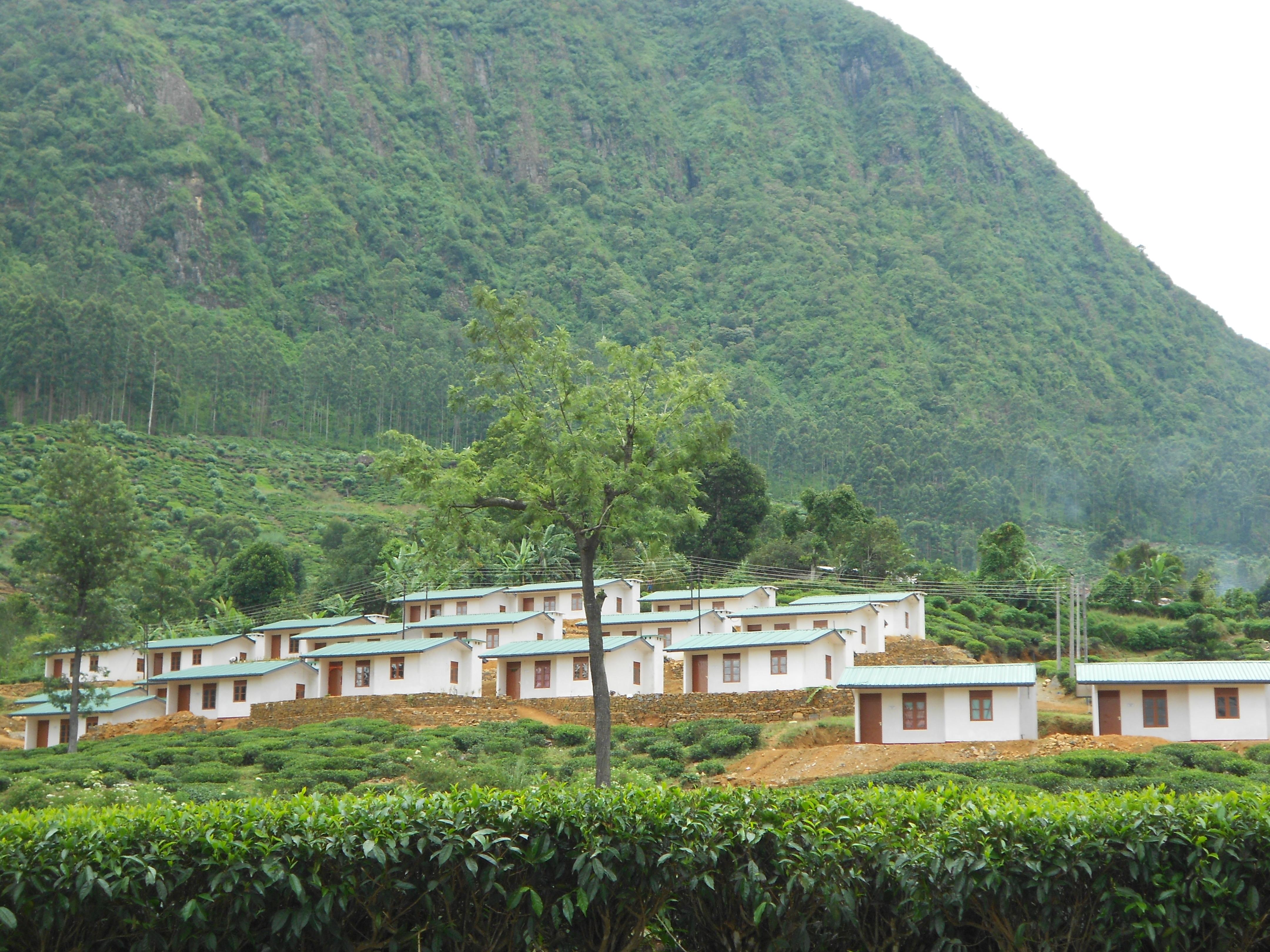 Construction d'un village au Sri Lanka